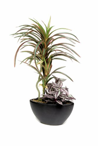 Artificial Silk Yucca in Ceramic Pot - 51cm, Red/Green