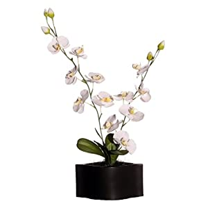 Vickerman AZF11036 Orchid in Black Artificial Plant, Ceramic White/Yellow, 29-Inch at Sears.com