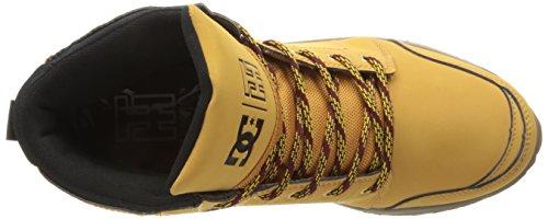 DC Men's Torstein Skate Shoe, Wheat/Black, 7.5 M US