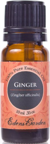 Ginger 100% Pure Therapeutic Grade Essential Oil- 10 ml