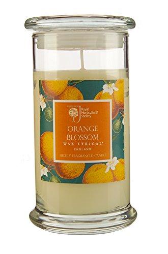 Royal Horticultural Society Grand verre à bougie Parfumée fleur d'oranger