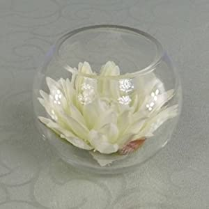 Artificial silk water lily display complete in small fish for Fish bowl amazon