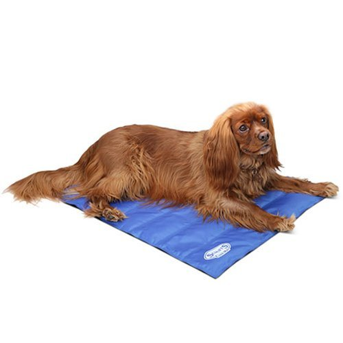 Scruffs-30-x-245-Cooling-Pet-Mat-Medium-Blue