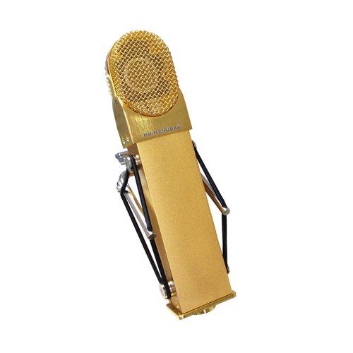 Hd-Hynudal® M9 Gold Large Diaphragm Condenser Microphone + Silvery Microphone Case + Mic Shock Mount
