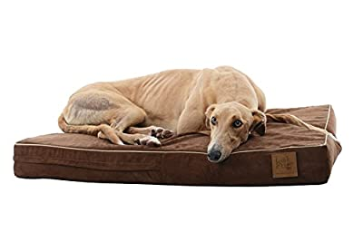 Laifug Solid Memory Foam Orthopedic Dog Bed with Waterproof Cover, Chocolate