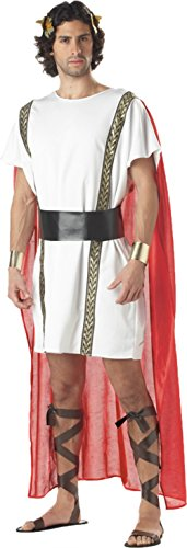 California Costumes Mens Caesar Toga Mark Anthony Theme Party Fancy Dress