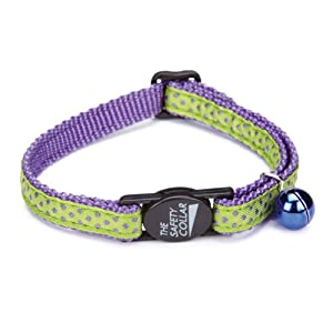 Savvy Tabby Nylon with Ribbon Cat Collar, Purple Dot