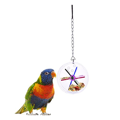 pet-bird-parrot-feeder-hangendes-spielzeug-fur-papageien