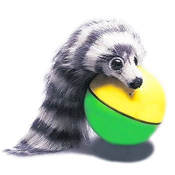 Game/Play Electronic Pets - Weazel Ball Playful Weasel Kid/Child