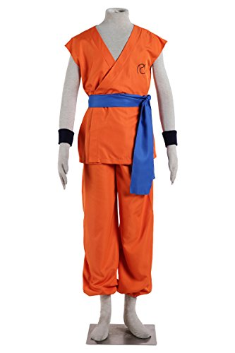 Cosrea Dragon Ball Goku Training Adult Cosplay Costume (Medium) (Goku Costume Adult)