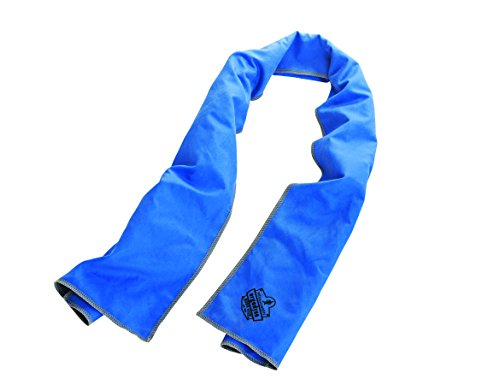 Ergodyne Chill-Its 6602MF Evaporative Microfiber Cooling Towel, Blue