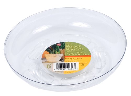 plastec-ss006-super-saucer-for-planters-6-inch