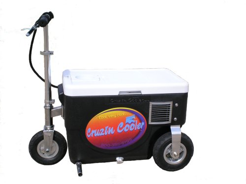 Cruzin Cooler 50-Series 500-Watt Electric Scooter