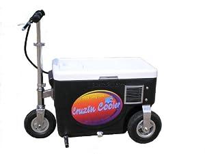 Cruzin Cooler 50-Series 500-Watt Electric Scooter (Black)