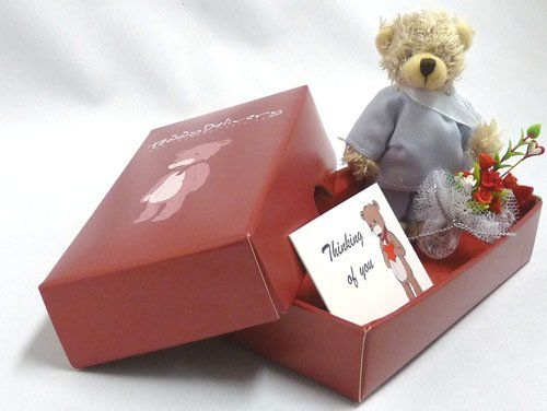 Get Well Teddy Bear Gift Package with a Flower Bouquet and 1 Free Gift Card (Thinking of You) - Teddy Delivery