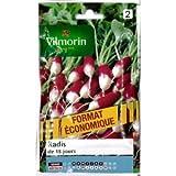 Vilmorin - 18 days radishes economical format