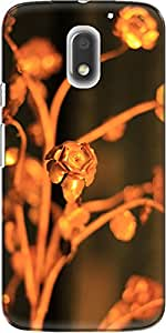 The Racoon Lean printed designer hard back mobile phone case cover for Motorola Moto E3 Power. (Gold Rose)