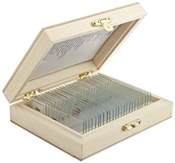 United Scientific, Deluxe Introductory Slide Set, (23331)