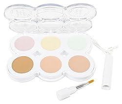 Hard Candys Nobodys Perfect Concealer Palette (FAIR Palette COLOR) Net Wt. 11.3 g (0.40 OZ)