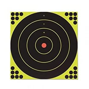 Birchwood Casey Shoot-N-C Bullseye Targets, 12, 5 Targets + 120 Pasters