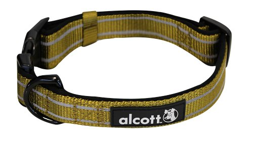 Alcott Storybook Adventure Pet Collar, Medium, Olive Green