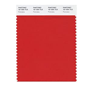 Pantone Smart Swatch 18 1564 Poinciana Painting Supplies