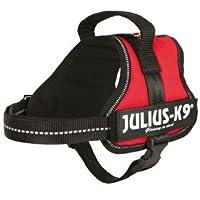 Julius K9 Powergeschirr