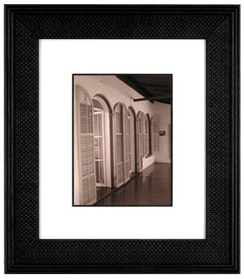 International Arts Plantation Shutters Framed Artwork in Sepia