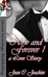 img - for Now and Forever 1 (A Love Story) book / textbook / text book