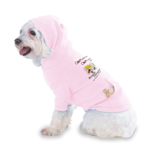 CRAZY PEOPLE DO CRAZY THINGS BUT Massage Therapists ARE PERFECTLY SANE! Hooded (Hoody) T-Shirt with pocket for your Dog or Cat Size SMALL Lt Pink