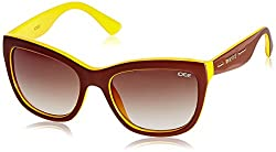 IDEE Square Sunglasses (IDS1839C3SG|100|Shiny Brown and Yellow )