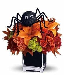 Gazania - eshopclub Same Day Halloween Flower Delivery - Online Halloween Flower - Halloween Flowers Bouquets - Send Halloween Flowers