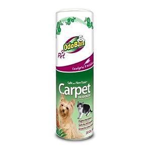 Amazon Com Odoban Pet Carpet Deodorizer 20 Ounce Pet