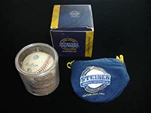 NY Yankees Game Used Official ML Baseball w/Yankee Stadium Dirt-Steiner - MLB Game Used Baseballs
