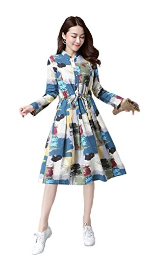 Women Autumn/Winter Loose Vintage Print Long Sleeve A-line Midi Flax Dress (M, D-J-10)