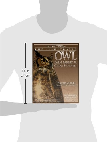 Illustrated Owl: Barn, Barred & Great Horned: The Ultimate Reference Guide for Bird Lovers, Artists, & Woodcarvers: Barn, Barred and Great Horned - ... 0 (Denny Rogers Visual Reference)