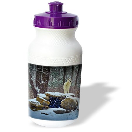 Wb_100273_1 Roni Chastain Animals - Arctic Wolf Blue - Water Bottles