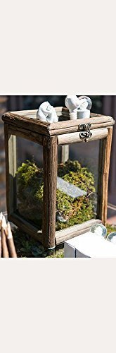 rustic-wood-and-glass-box-with-hinged-lid-style-9554-by-davids-bridal