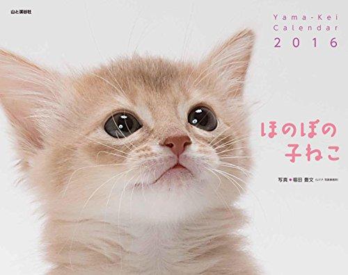 カレンダー2016 ほのぼの子ねこ (ヤマケイカレンダー2016)