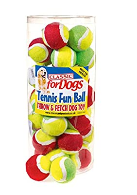 Classic Pet Products Mini Tennis Fun Ball, Green/Yellow
