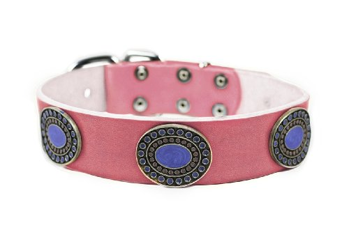 "Dean and Tyler ""BLUE SILVERADO"" Dog Collar With Nickel Buckle - Pink - Size 18"" By 1 1/2"" Width. Fits neck size 16 Inches to 20 Inches."
