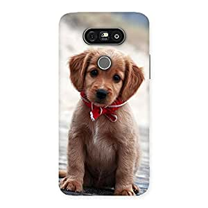 Special Looking Puppy Multicolor Back Case Cover for LG G5