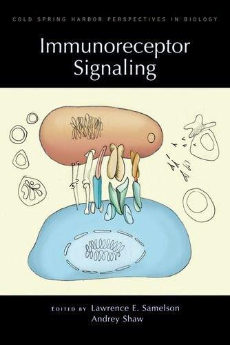 Immunoreceptor Signaling (Cold Spring Harbor Perspectives In Biology)
