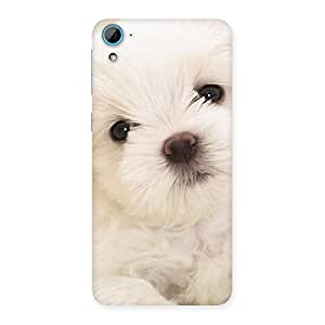 Cute Pup White Back Case Cover for HTC Desire 826
