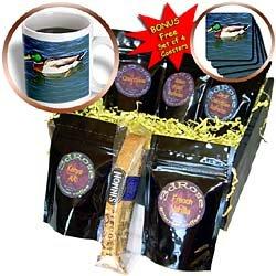 Birds - Mallard Duck - Coffee Gift Baskets - Coffee Gift Basket (Gourmet,3dRose LLC,Gourmet Food,Gourmet Gifts,Coffee & Tea)