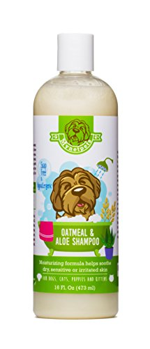 oatmeal-aloe-shampoo-for-dogs-cats-puppies-and-kittens-by-mynetpets