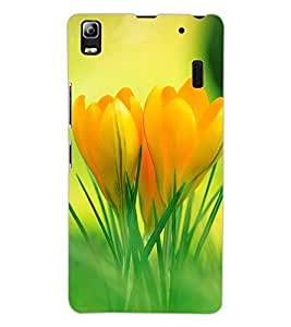 ColourCraft Lovely Flowers Design Back Case Cover for LENOVO A7000