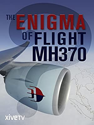 The Enigma of Flight MH370