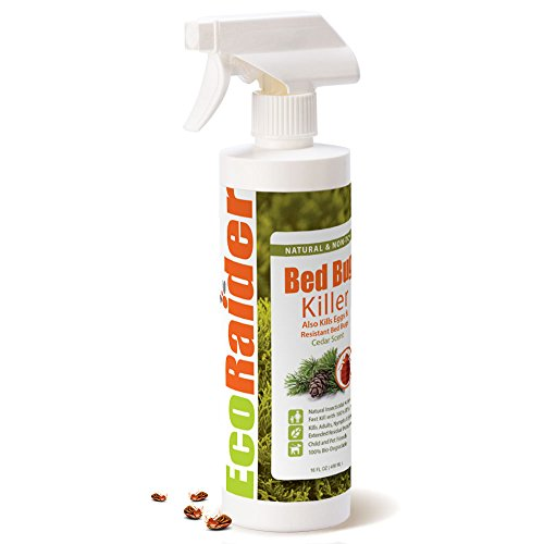 Bed Bug spray by EcoRaider