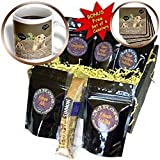 Beverly Turner Groundhog Photography GroundHog I Saw my Shadow Coffee Gift Baskets Coffee Gift Basket